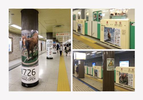 JRA新!札幌競馬場グランドオープン